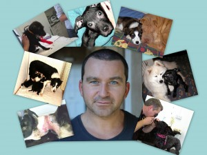 Cam and dogs collage